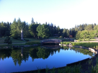 Peaceful Japanese Gardens at the Devonian Botanical Gardens.
