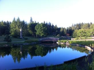 Peaceful Japanese Gardens at the Devonian Botanical Gardens.
