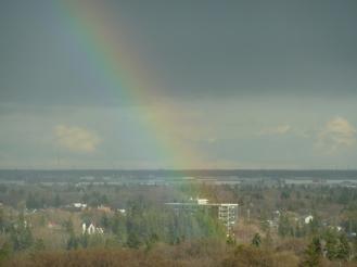 A rainbow landing in Mill Creek ravine..