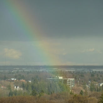 A rainbow landing in Mill Creek ravine..