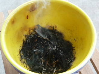 """The remains of my attempt to """"purify"""" our home with sweetgrass. I nearly set the apartment ablaze. But I didn't."""